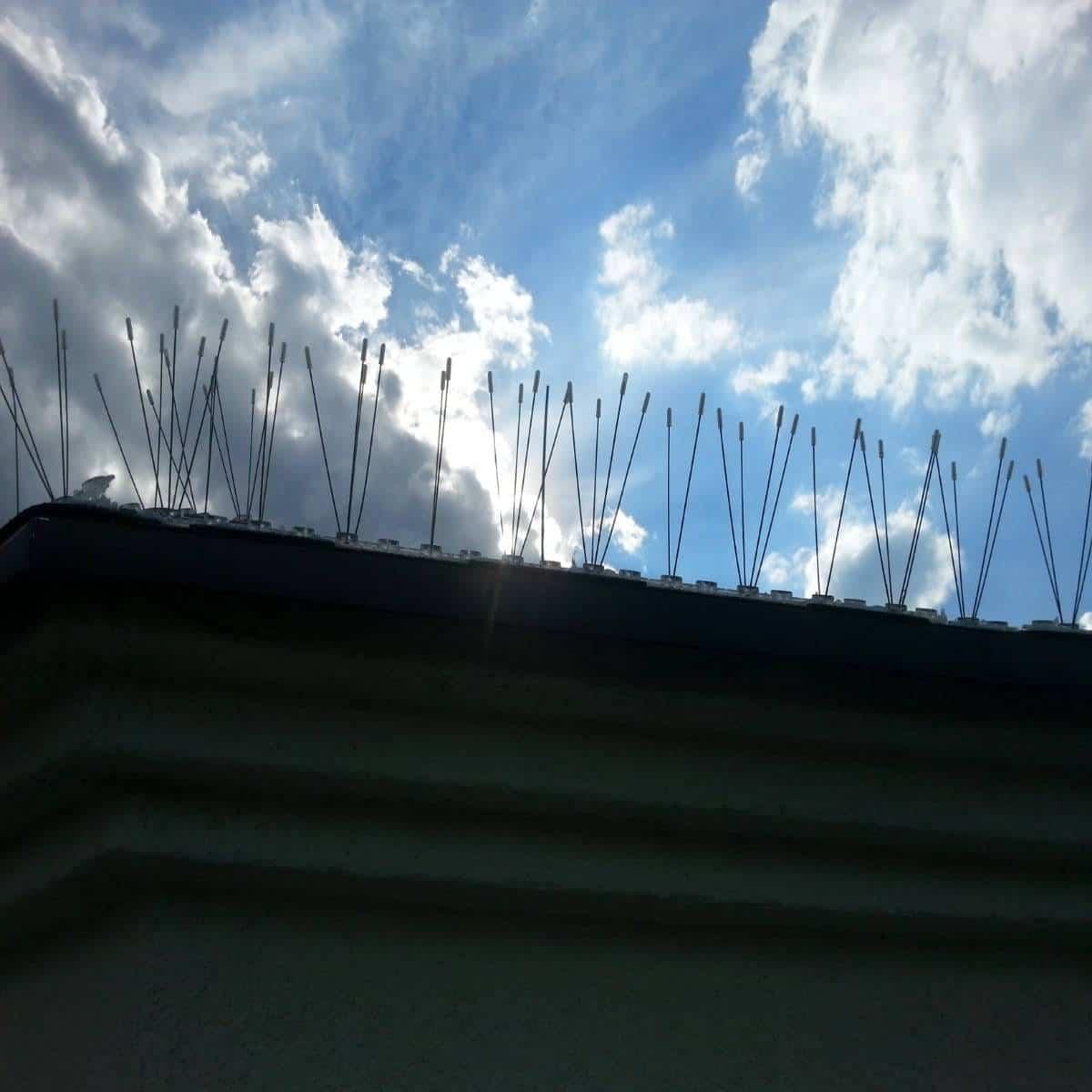 Kolce przeciw gołębiom zamontowane na dachu